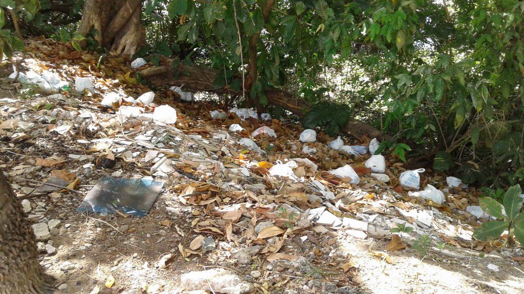 Na Rua Leonardo Bezerra Cavalcanti, em Casa Forte, faz vergonha a margem do rio Capibaribe: nem limpeza nem multas.