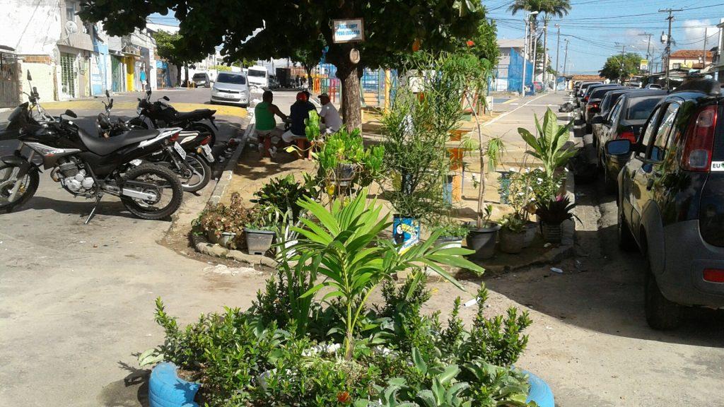 O jardim pode não ser um primor, mas está valendo: tornou a Praça mais verde e evita o lixo.